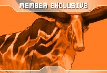 Photo of Member Exclusive | Ankole Color Concept